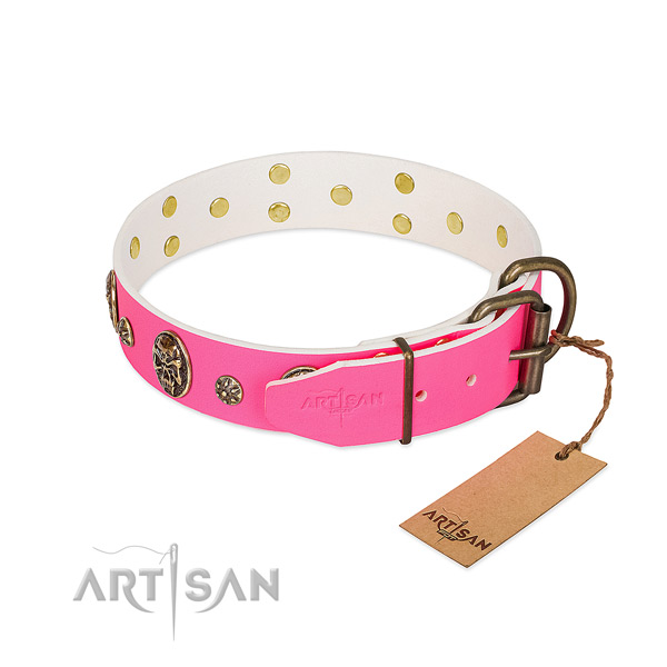 Corrosion resistant D-ring on natural leather collar for daily walking your doggie