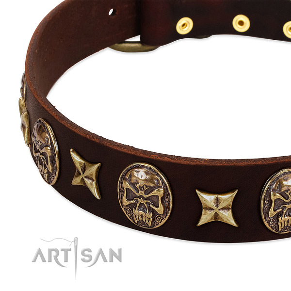 Rust-proof buckle on genuine leather dog collar for your pet
