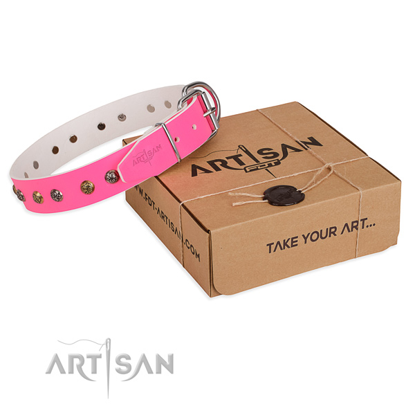 Fancy walking dog collar with Trendy rust resistant embellishments