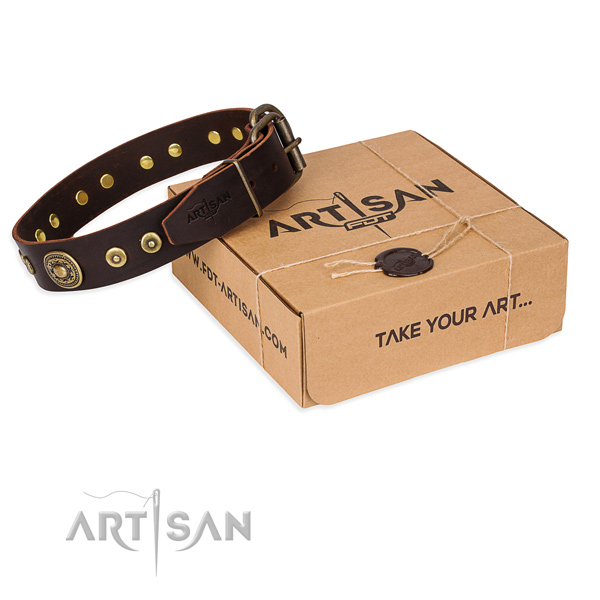 Full grain leather dog collar made of reliable material with reliable hardware