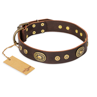 """One-of-a-Kind"" FDT Artisan Handmade Decorated Brown Leather dog Collar"