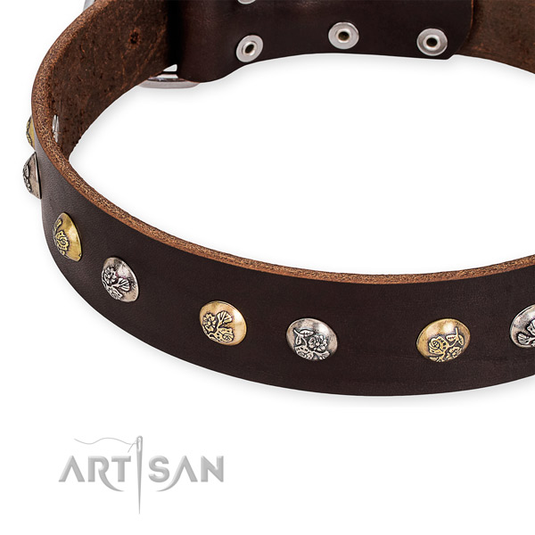 Natural genuine leather dog collar with stylish strong adornments