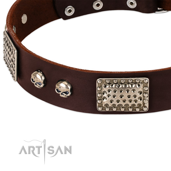 Rust-proof traditional buckle on full grain genuine leather dog collar for your four-legged friend