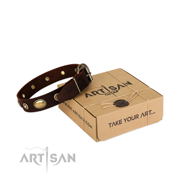 Rust-proof fittings on natural leather dog collar for your pet