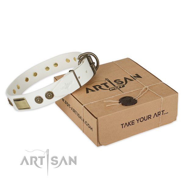 Reliable buckle on natural genuine leather dog collar for daily use