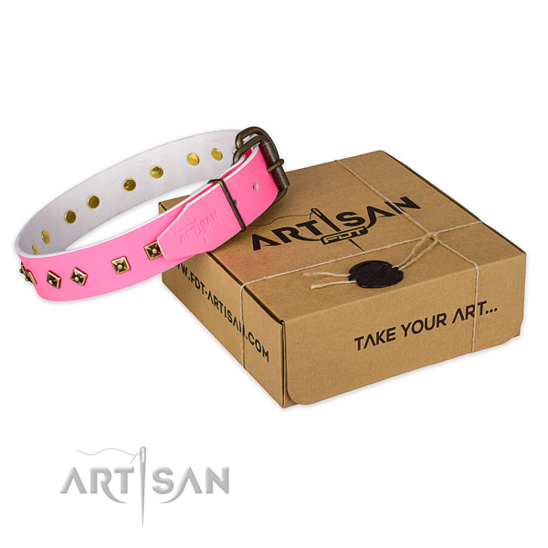 Strong fittings on genuine leather dog collar for fancy walking