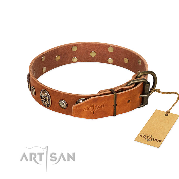 Corrosion resistant buckle on full grain genuine leather collar for stylish walking your doggie