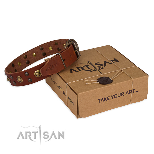 Corrosion proof buckle on genuine leather collar for your attractive four-legged friend
