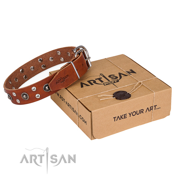 Reliable traditional buckle on full grain leather collar for your handsome doggie