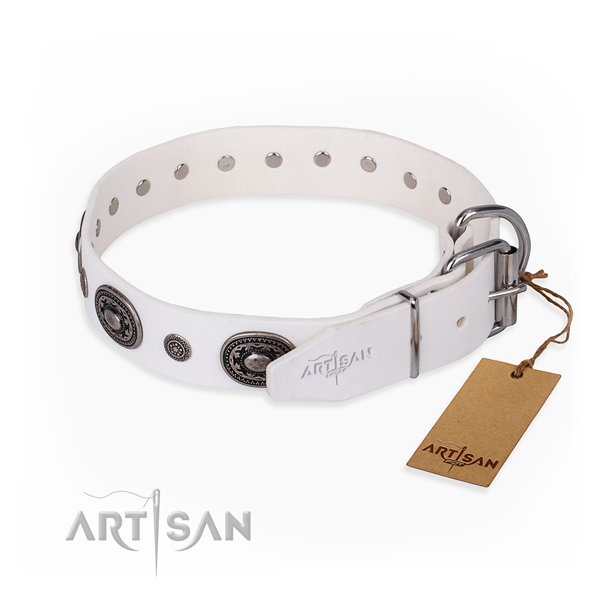 Soft to touch leather dog collar crafted for walking