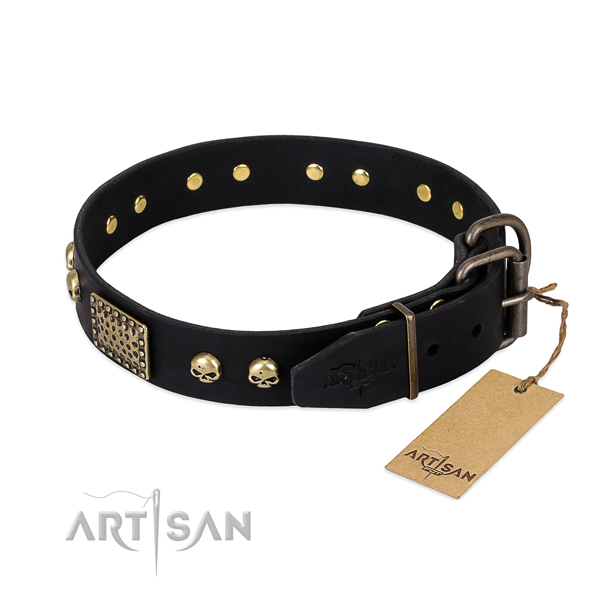 Strong fittings on daily walking dog collar