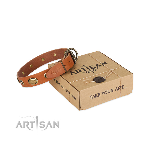 Durable studs on natural leather dog collar for your canine