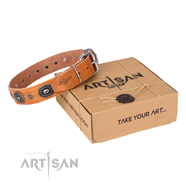 Strong full grain genuine leather dog collar crafted for everyday walking