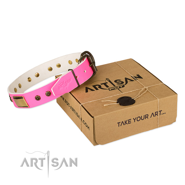 Adorned full grain leather collar for your attractive dog