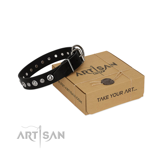 Top quality full grain genuine leather dog collar with stylish design embellishments