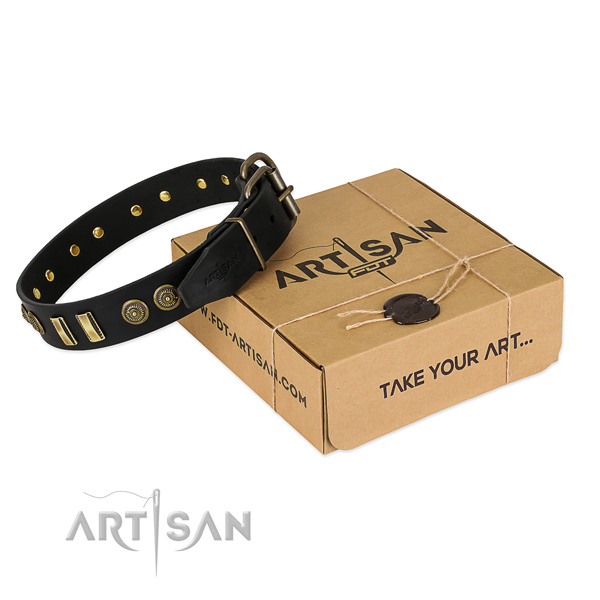 Corrosion proof adornments on genuine leather dog collar for your dog