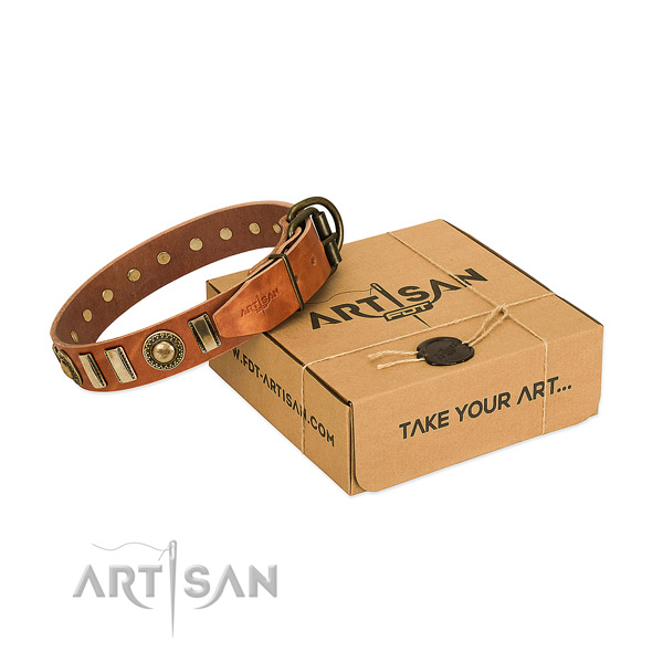 Gentle to touch full grain leather dog collar with reliable fittings