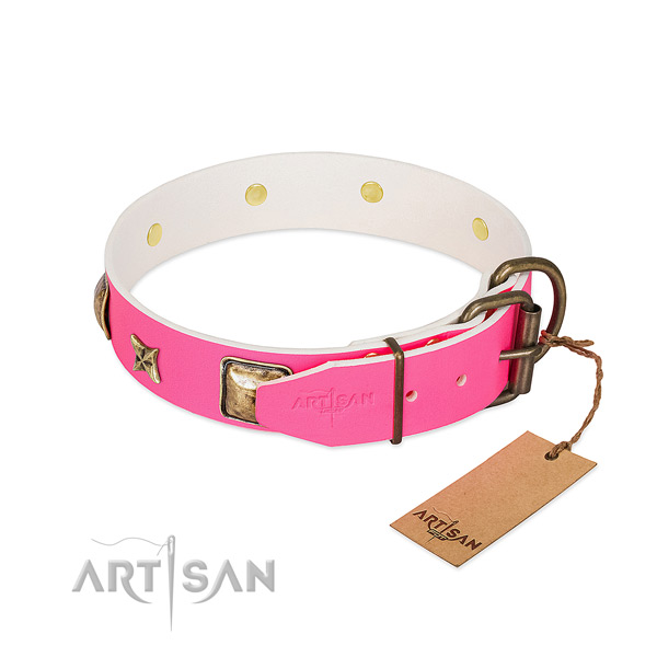Strong buckle on full grain leather collar for everyday walking your four-legged friend