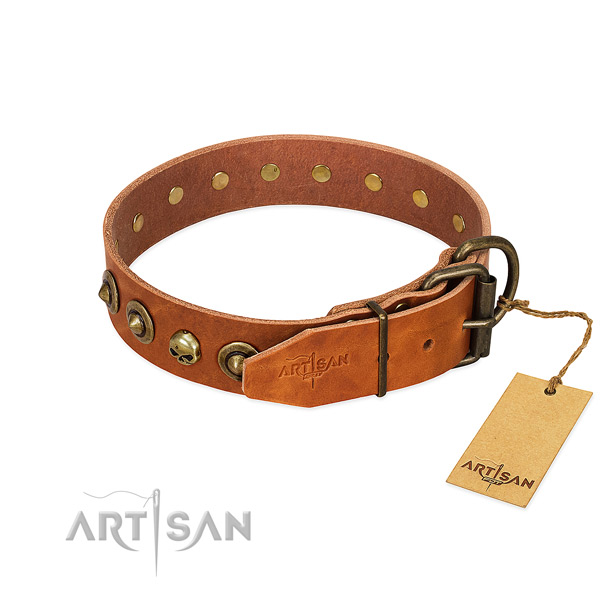 Full grain leather collar with significant embellishments for your pet