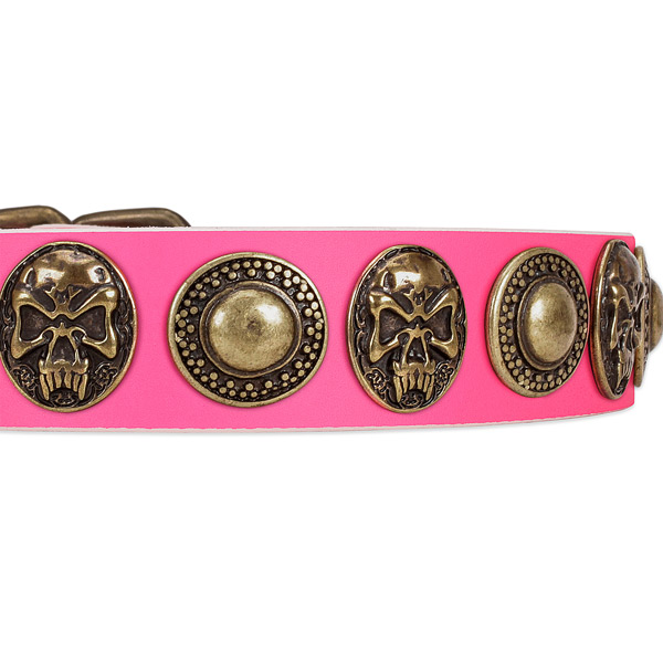 Corrosion proof decorations on leather dog collar for your dog