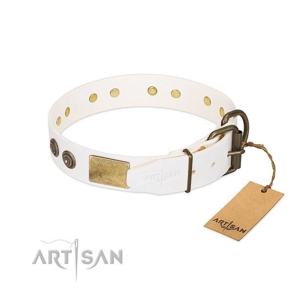 Rust-proof hardware on full grain genuine leather collar for daily walking your canine