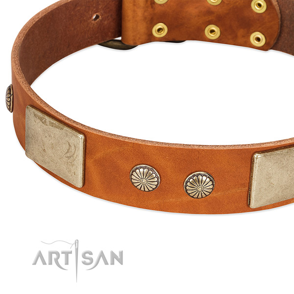 Corrosion proof fittings on natural genuine leather dog collar for your canine