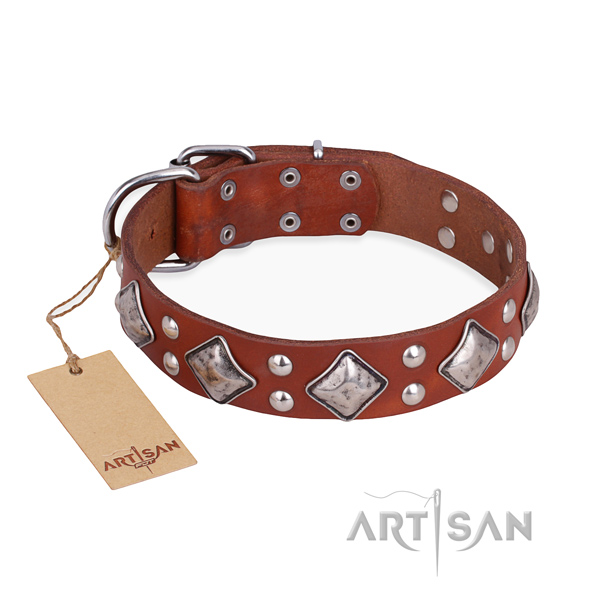 Fancy walking amazing dog collar with reliable traditional buckle