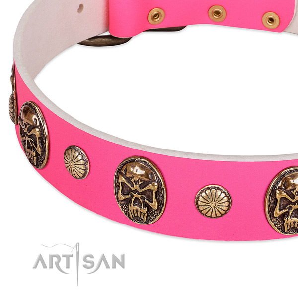 Corrosion resistant decorations on natural genuine leather dog collar for your doggie