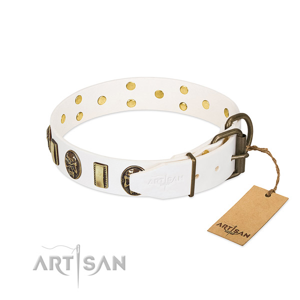 Corrosion proof fittings on full grain leather collar for basic training your canine