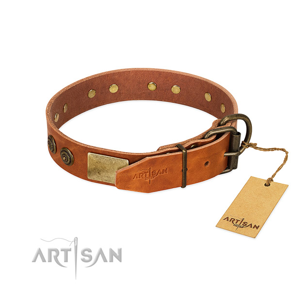 Strong traditional buckle on full grain genuine leather collar for walking your canine