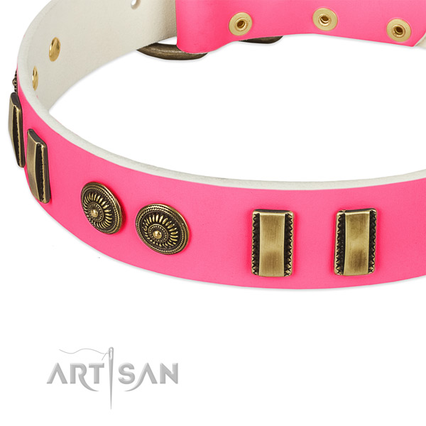 Strong decorations on natural leather dog collar for your pet
