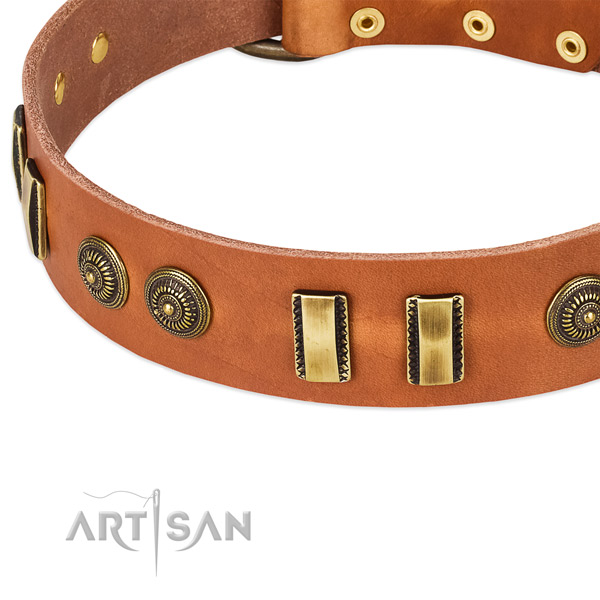 Corrosion resistant adornments on genuine leather dog collar for your dog