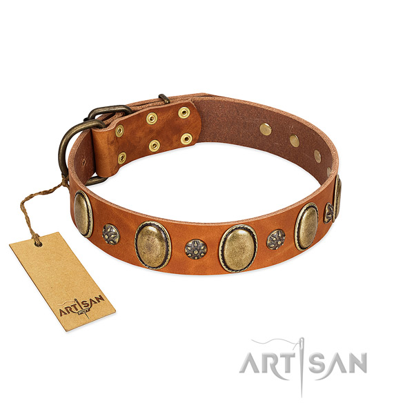 Walking top rate leather dog collar with decorations