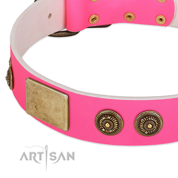 Fashionable dog collar crafted for your stylish canine