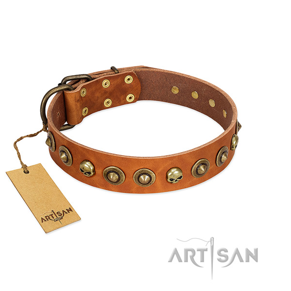 Full grain leather collar with trendy adornments for your doggie