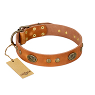 """Sun Beams"" FDT Artisan Tan Leather dog Collar with Decorations"