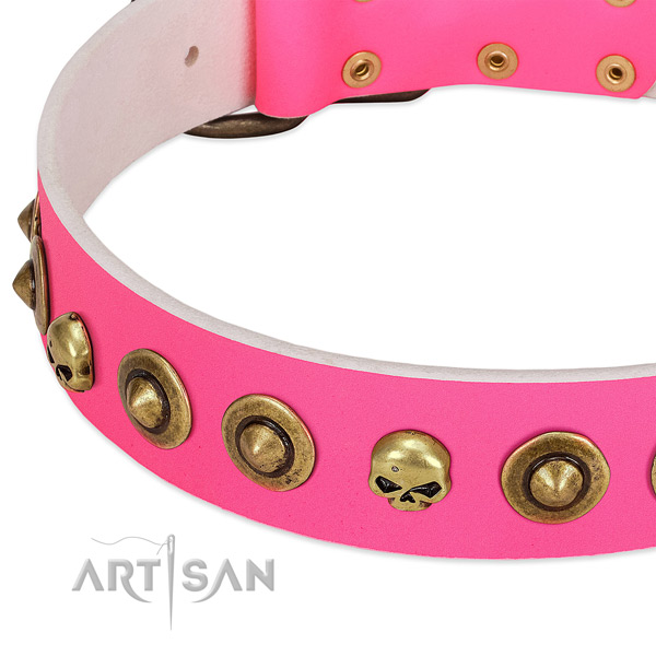 Exquisite adornments on natural leather collar for your four-legged friend