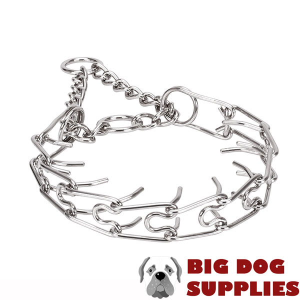 Corrosion proof dog prong collar with stainless steel removable links