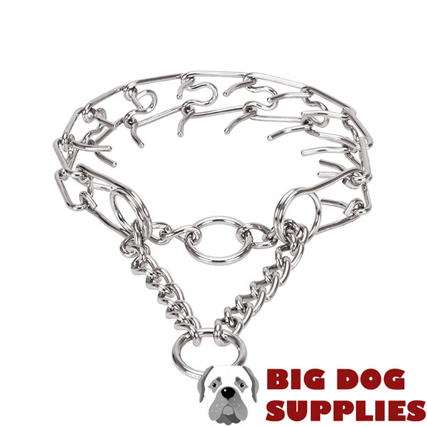 Stainless steel dog prong collar for large canines