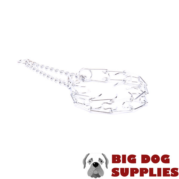 Chrome plated steel dog prong collar for poorly behaved pets
