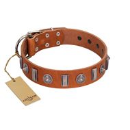 """Luxurious Necklace"" FDT Artisan Tan Leather dog Collar with Silver-Like Adornments"