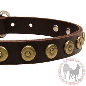 Brass Doted Circles on Leather Collar for Walking in Style