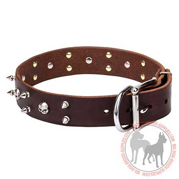 Brown Leather Dog Collar with Unique Decoration