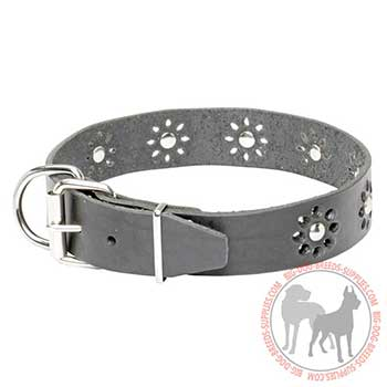 Leather Collar for Dog Walking
