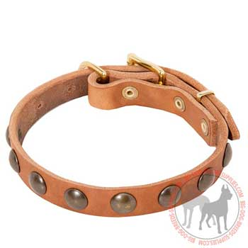 Dog Leather Collar for Obedience Training