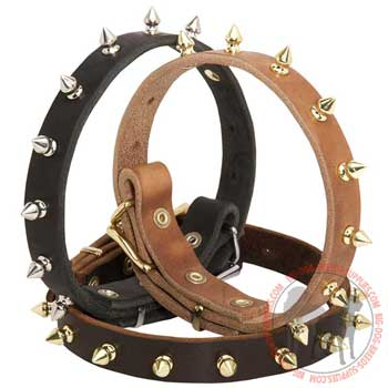 Dog Leather Collar for Everyday Walking