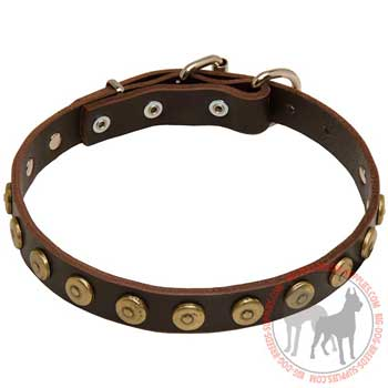 Dog Leather Collar with Riveted Circles