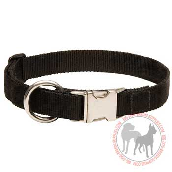 Nylon Collar for Dog All Weather Walking and Training