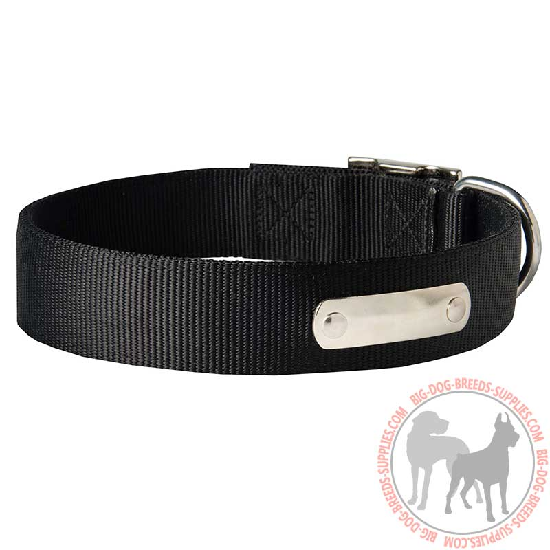 Buy Personalized 2 Ply Nylon Dog Collar with Name Tag