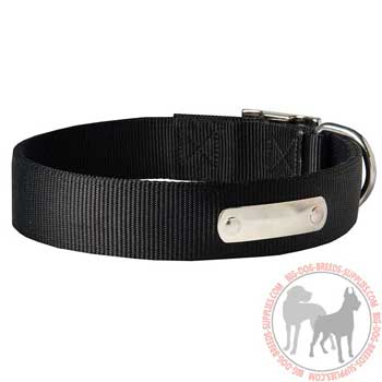 American Pit Bull Terrier Collar Made of Neoprene Nylon Resistant to Weather